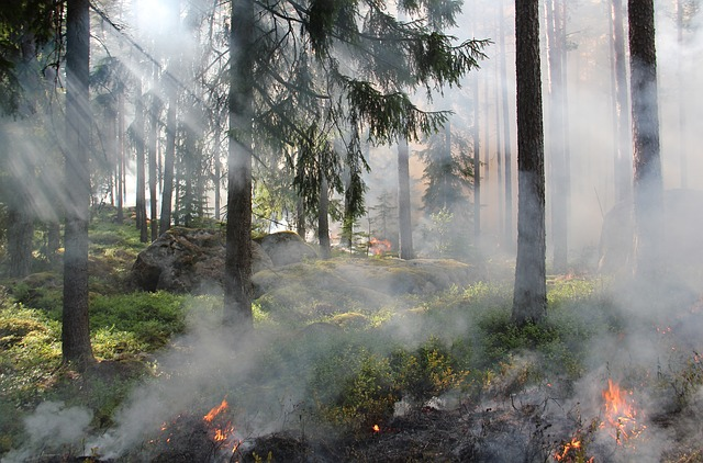 Portée juridique des mesures de prévention d'un plan de prévention des risques naturels à l'égard d'un permis de construire