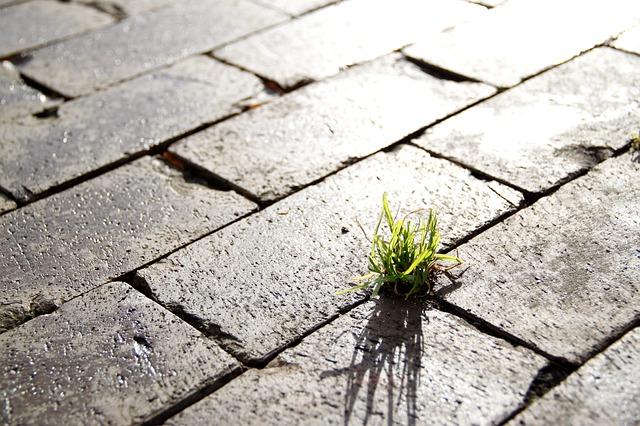 Lutte contre l'artificialisation des sols